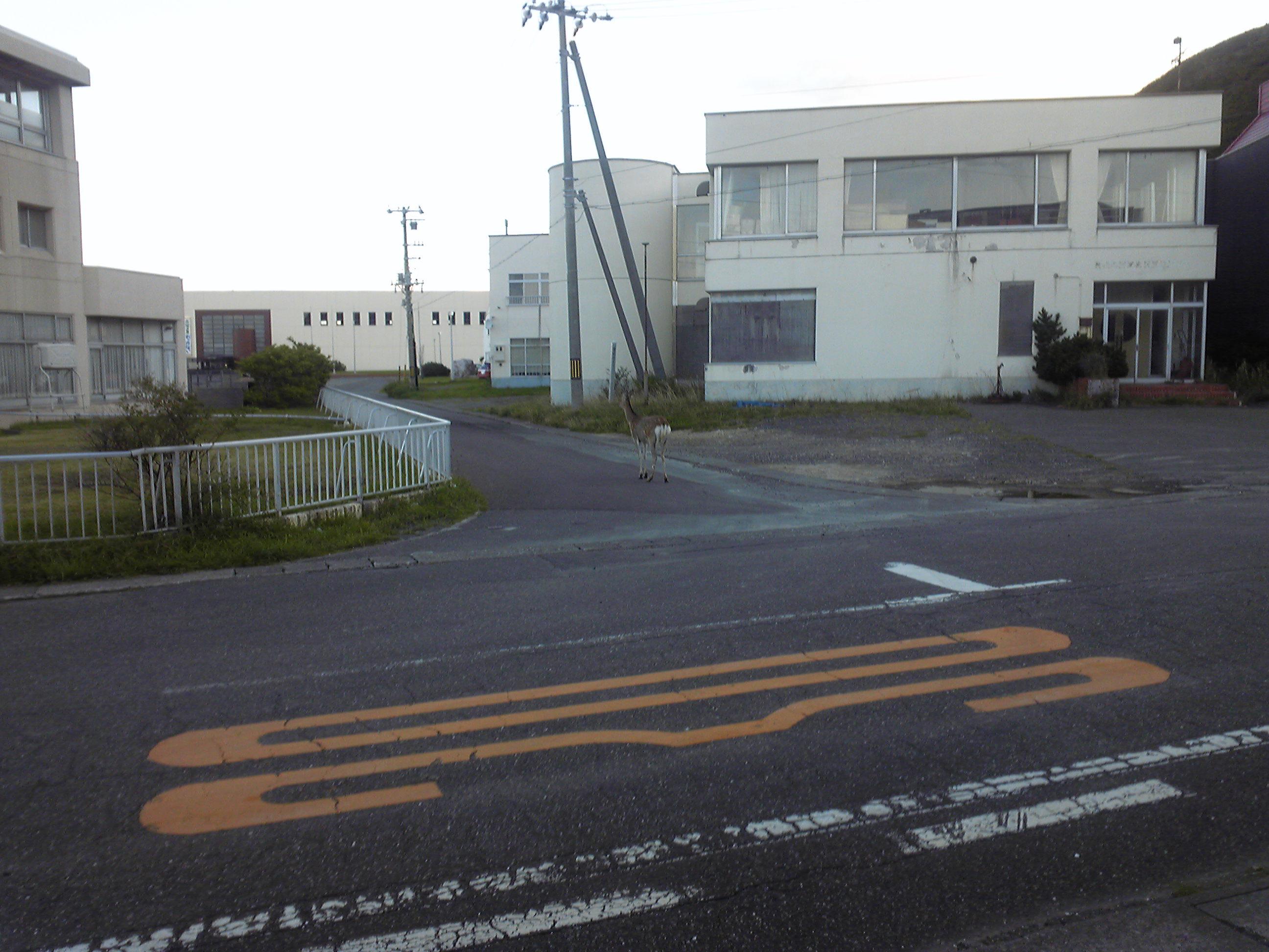 道路 長い 直線 日本 一